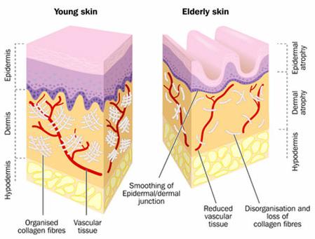 Wrinkle Close Up